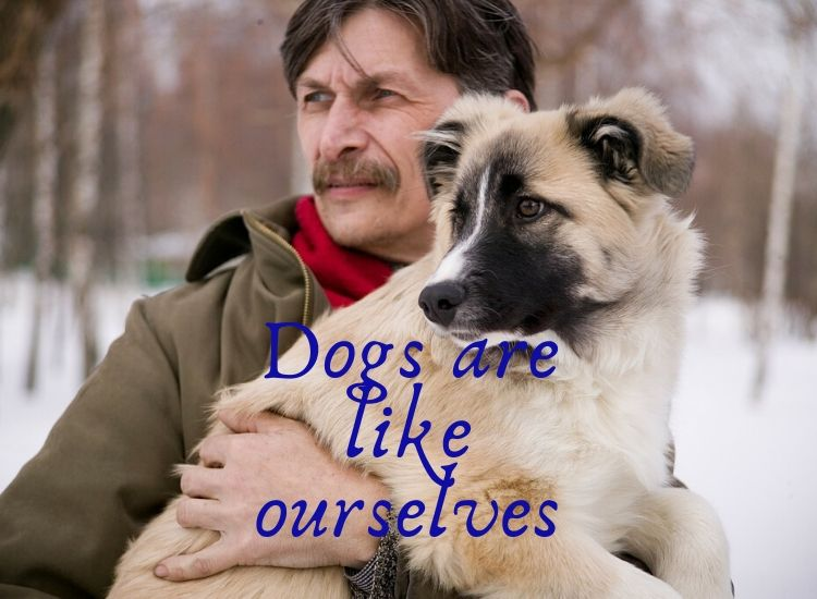 Dogs are like ourselves