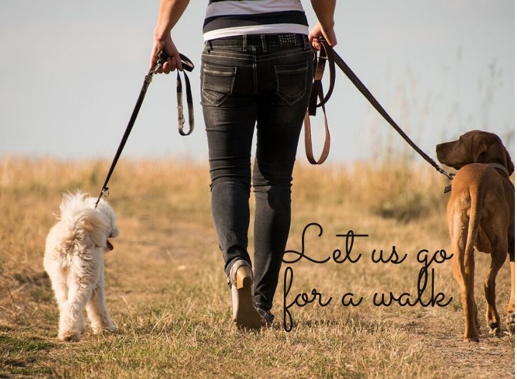 Let us go for a walk