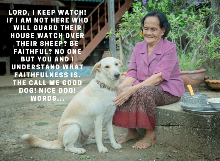 Lord, I keep watch! If i am not here who will guard their house watch over their sheep_ be faithful_ no one but you and i understand what fAithfulness is. The call me good dog! nice dog! words...