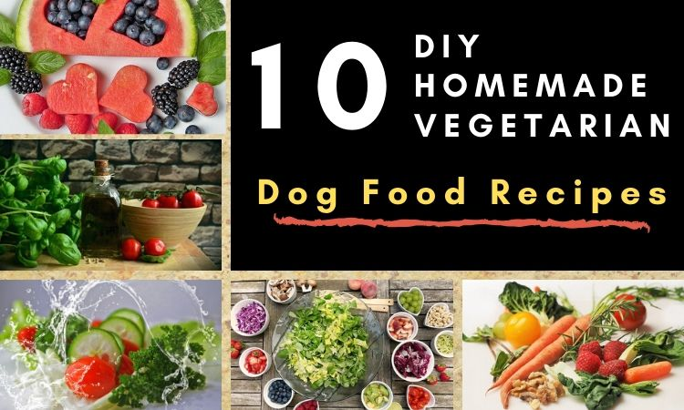 DIY Homemade Vegetarian Dog Food Recipes