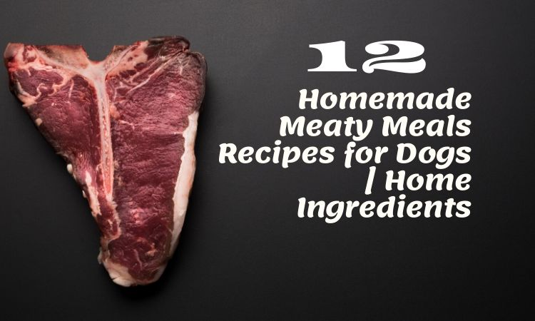 12 Homemade Meaty Meals Recipes for Dogs | Home Ingredients