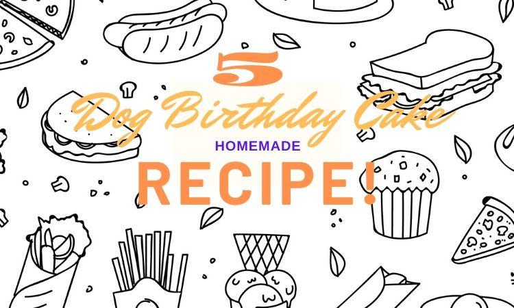 5 Best Homemade Dog Birthday Cake & Food Recipe