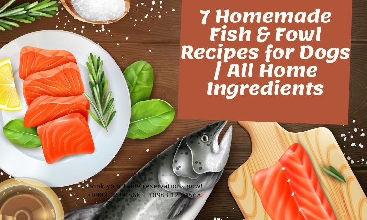 7 Homemade Fish & Fowl Recipes for Dogs | All Home Ingredients