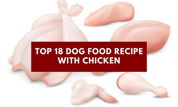 Top 18 Dog Food Recipe with Chicken